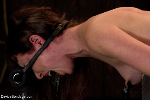 Limit of BDSM : Sex Devices for Bondage